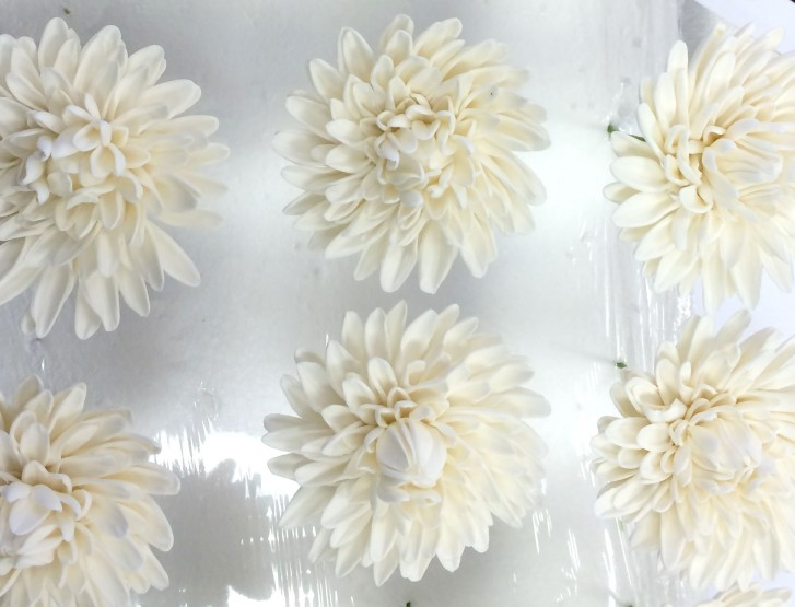 Unpainted Sugar Flower Dahlias