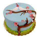 Love Bird Class Cake